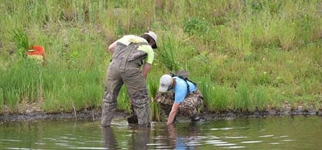 Illinois Central College Wetland Project